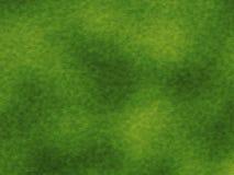 Struttura di alta risoluzione dell'erba verde Fotografia Stock