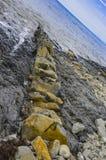 Struttura di arenaria Fotografia Stock