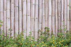 Struttura di bambù del fondo della parete con fogliame Immagini Stock Libere da Diritti