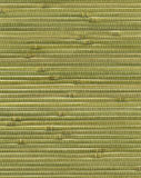 Struttura di bambù della carta da parati Fotografia Stock Libera da Diritti