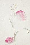 Struttura di carta del gelso con il fiore secco Fotografia Stock Libera da Diritti