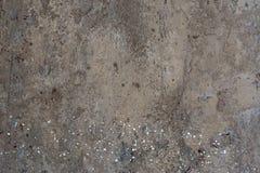 Struttura di cemento Immagine Stock