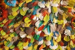 struttura di colore della piuma Immagini Stock