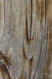 Struttura di colore di vecchie plance di legno Fotografie Stock