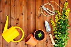 Struttura di Copyspace con gli strumenti e gli oggetti di giardinaggio su vecchio fondo di legno Fotografia Stock