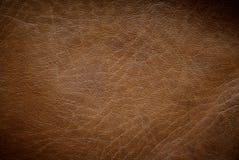 Struttura di cuoio del Brown Fotografia Stock