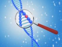 Struttura di DNA sotto una lente d'ingrandimento 3d rendono Fotografie Stock