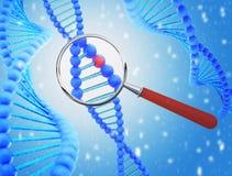 Struttura di DNA sotto una lente d'ingrandimento 3d rendono Immagine Stock Libera da Diritti