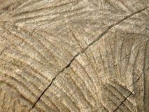 struttura di elaborazione del legno Immagine Stock Libera da Diritti