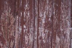 Struttura di fondo di legno di mogano fotografia stock