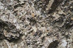 Struttura di Granit Immagine Stock Libera da Diritti