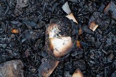 Struttura di Gray Ashes, fondo per il sito Web o dispositivi mobili immagini stock