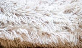 Struttura di lana grigia Immagini Stock Libere da Diritti