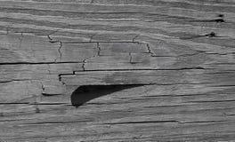 Struttura di legno 2 Immagini Stock Libere da Diritti