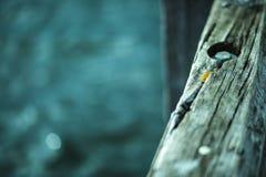 Struttura di legno approssimativa del vecchio molo fotografia stock