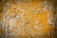 Struttura di legno arancione Fotografia Stock Libera da Diritti