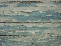 Struttura di legno blu del texturewhite di legno immagine stock