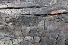 Struttura di legno bruciata Fotografie Stock