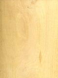 Struttura di legno chiara Immagine Stock Libera da Diritti