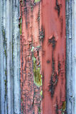 Struttura di legno colorata Fotografie Stock