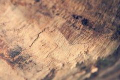 Struttura di legno con la corteccia Fotografia Stock Libera da Diritti