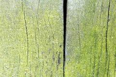 Struttura di legno dal pezzo di legno molto vecchio e stagionato Fotografie Stock