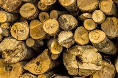 Struttura di legno dei biglietti di S. Valentino Immagine Stock Libera da Diritti