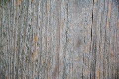 Struttura di legno del bordo Immagine Stock Libera da Diritti