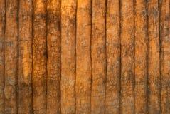 Struttura di legno del cemento. Immagine Stock Libera da Diritti