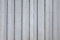 Struttura di legno del fondo della pavimentazione di Decking del tavolato del patio bianco Fotografie Stock Libere da Diritti