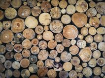 Struttura di legno del fondo del legname immagine stock