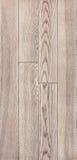 Struttura di legno del pavimento, parquet della cenere Fotografia Stock