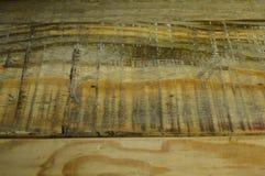 Struttura di legno del pino Grano, copertura fotografia stock libera da diritti
