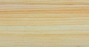 Struttura di legno dell'albero di cedro Fotografia Stock