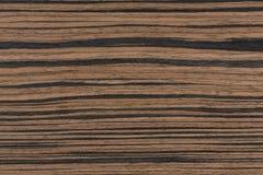Struttura di legno dell'ebano reale per la sensibilità naturale di alto impatto Fotografia Stock