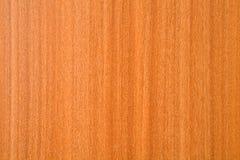 Struttura di legno dell'impiallacciatura Fotografia Stock Libera da Diritti