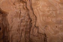 struttura di legno della Briar-radice fotografia stock