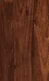 Struttura di legno della hevea Fotografia Stock