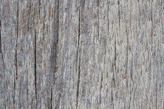 Struttura di legno della macro Immagini Stock Libere da Diritti