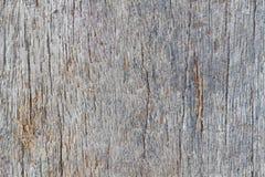 Struttura di legno della macro Immagini Stock