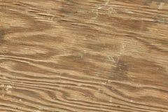 Struttura di legno della macro Fotografia Stock