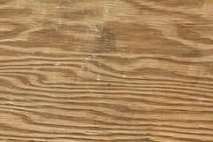 Struttura di legno della macro Fotografie Stock Libere da Diritti