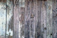 Struttura di legno della parete Immagini Stock Libere da Diritti