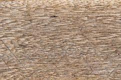 Struttura di legno della parete, fondo di legno Immagini Stock