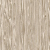 Struttura di legno della priorità bassa del granulo Fotografia Stock Libera da Diritti