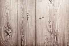Struttura di legno della quercia Fotografia Stock Libera da Diritti