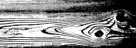 Struttura di legno di lerciume Fondo isolato di legno naturale Illustrazione di vettore Immagine Stock Libera da Diritti