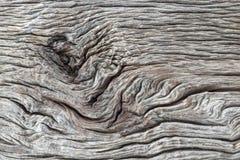 Struttura di legno, fondo di legno Fotografia Stock