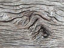 Struttura di legno, fondo di legno Immagine Stock