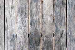 Struttura di legno grigia con sfondo naturale, struttura di legno Fotografie Stock Libere da Diritti